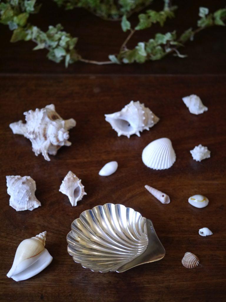 貝の形のバターディシュ アンティーク シルバー