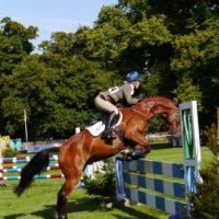 horse trials (7)