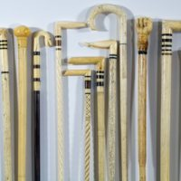 Walking Sticks5